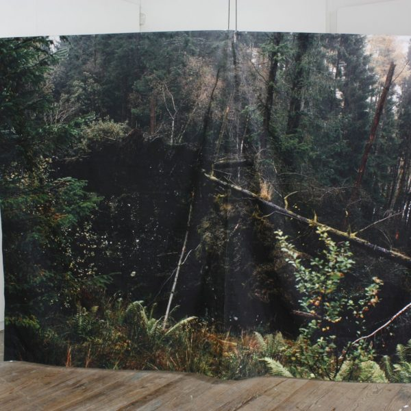 an artwork with image of trees on fabric, hanging close to the floor